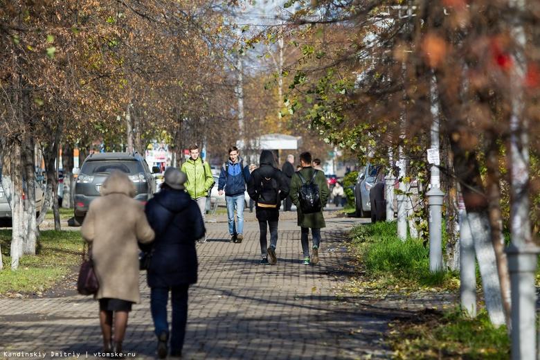 Эксперты объяснили появление в Томске большого количества насекомых