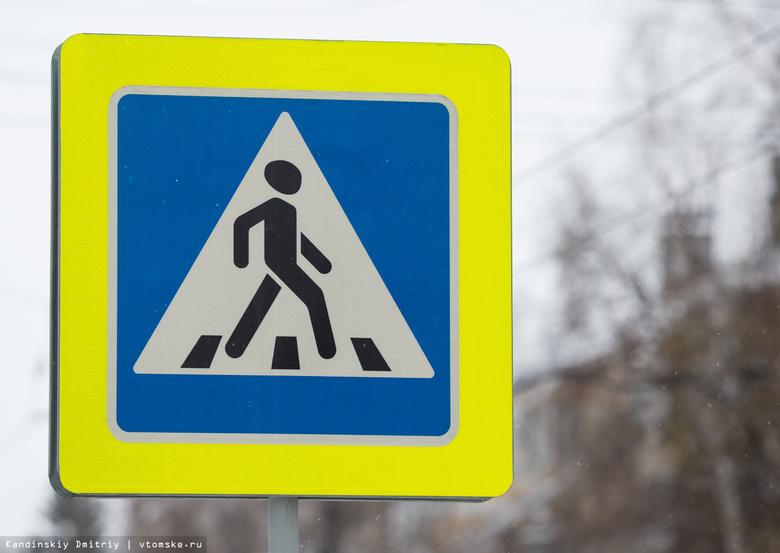 Макеты детей предложили установить возле переходов на дорогах Томской области