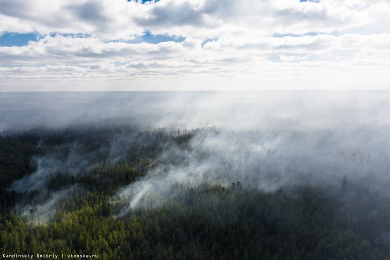В МЧС назвали основную причину сибирских пожаров