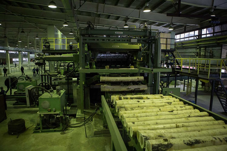Российско-китайский завод по производству шпона открылся в Асино (фото)