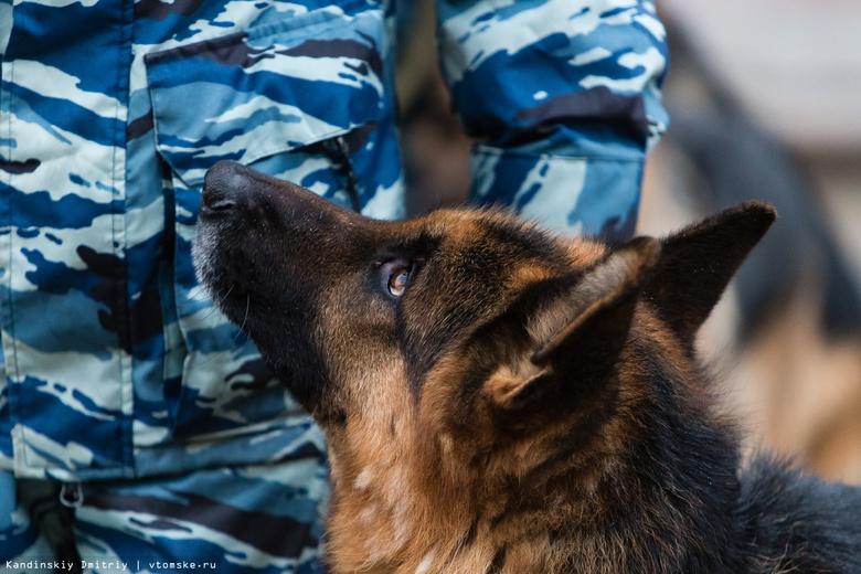 Посетителей и сотрудников ТЦ в Томске эвакуировали из-за сообщения о минировании