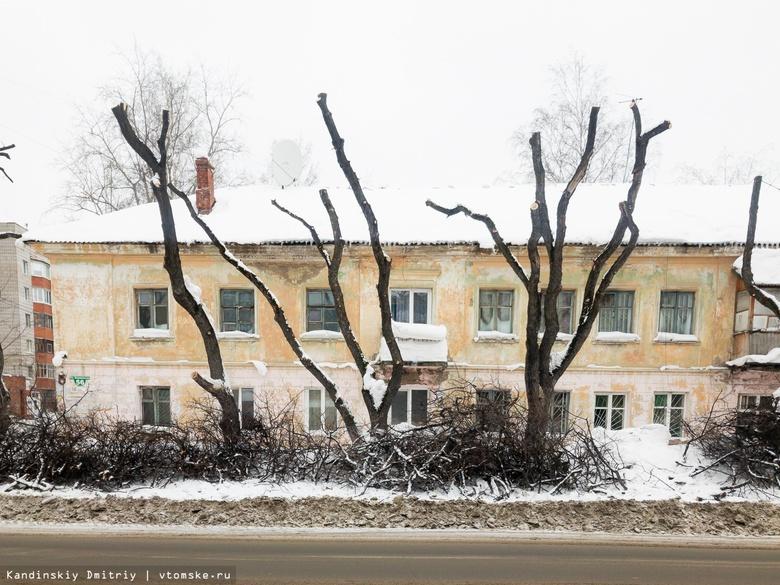 Около 100 тополей на ул.Яковлева подрежут или снесут