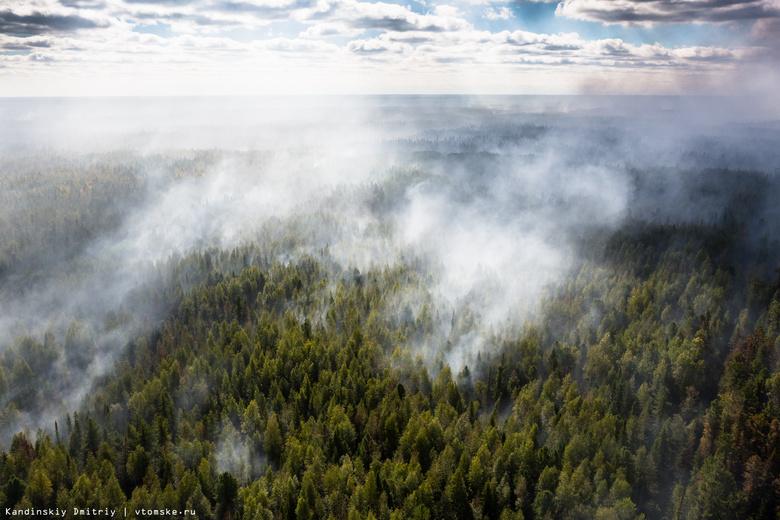 Возникший из-за грозы пожар на 200 га потушили в Томской области