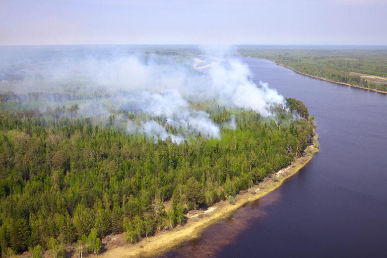 В регионе действуют три лесных пожара