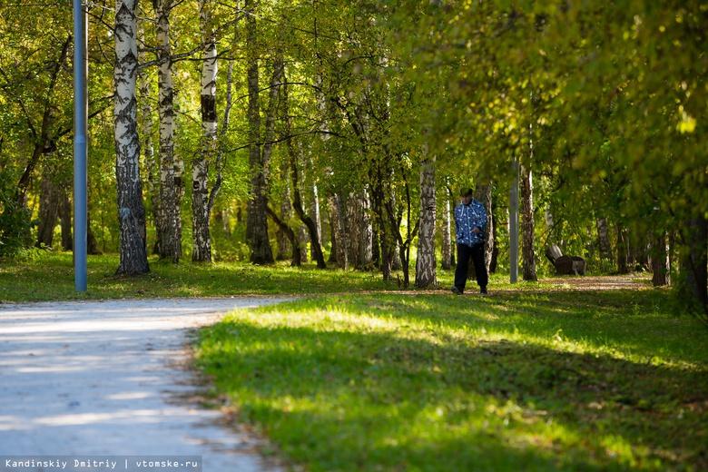 Инвестор из Москвы хочет установить колесо обозрения в Михайловской роще Томска