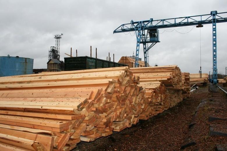 Томичи через фирмы-однодневки вывезли в Узбекистан лесоматериалов на 24 млн руб