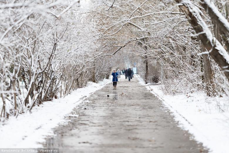 Власти вновь подняли тему покупки снегоплавильной установки в Томске