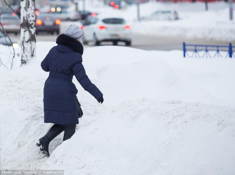 Синоптик: декадная норма снега выпала в Томске за выходные