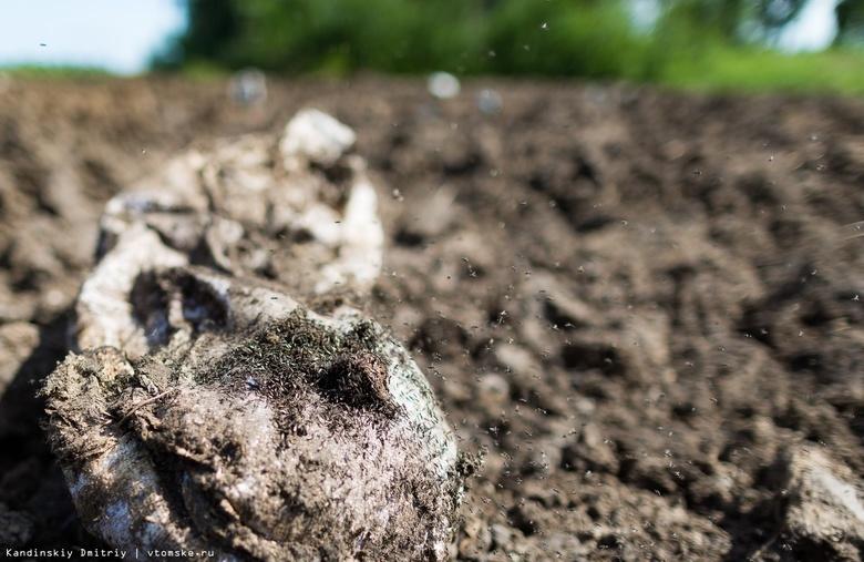 Россельхознадзор обязал СПК «Межениновский» очистить участок земли от куриного помета