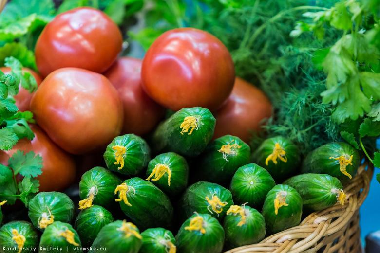Росстат зафиксировал стремительный скачок цен наогурцы ипомидоры