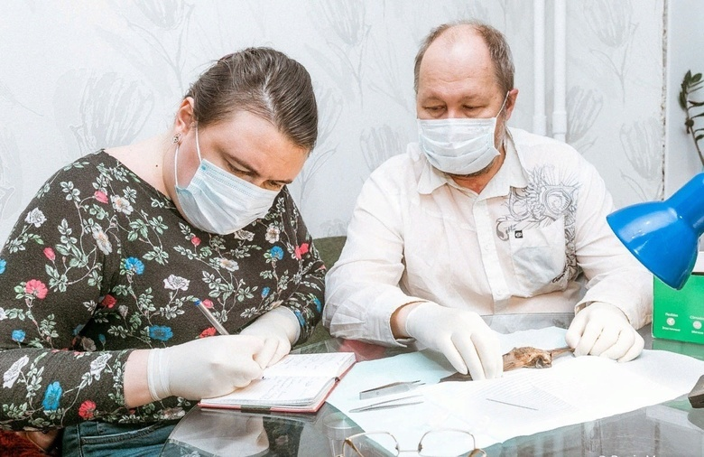 Томские биологи выявили новый вид клеща на Кавказе