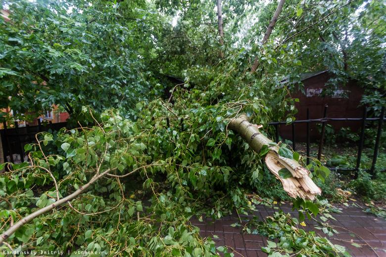 Томичи в соцсетях сообщают о последствиях шторма в городе