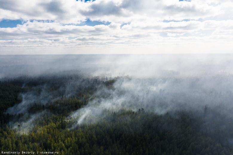 Авиалесоохрана четвертый день борется с пожаром в лесничестве Томской области