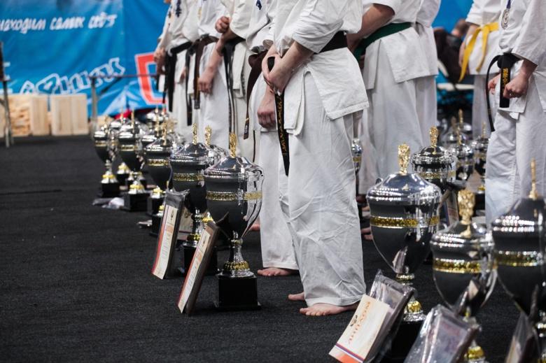 Северчане стали чемпионами мира по киокусинкай