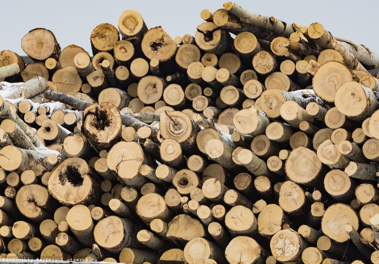 Прокуратура: две фирмы из Китая не высадили деревья после лесозаготовки