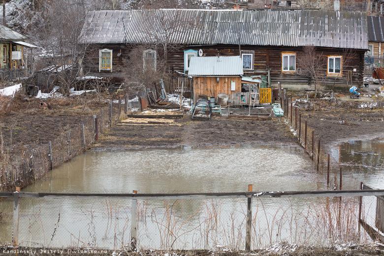 Несколько придомовых участков подтопило в Колпашевском районе из-за паводка