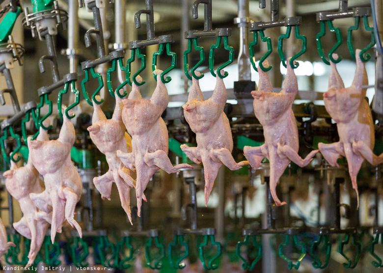 Россельхознадзор нашел сальмонеллу в мясе птицы в магазинах Стрежевого