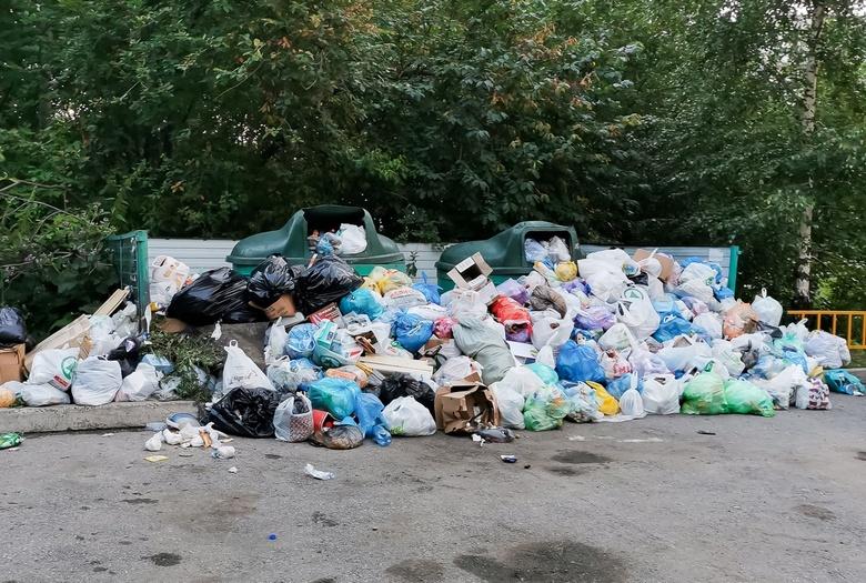 САХ неделю не вывозит мусор в томском дворе из-за раскопок на сетях