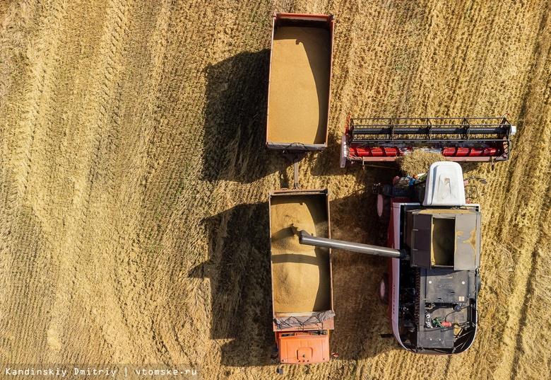 Успеть до дождей: как томские хозяйства собирают с полей урожай