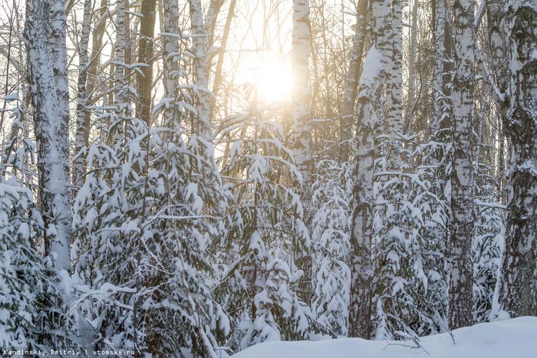 Небольшой снег иветер до12 м/с ожидаются вчетверг вТомске