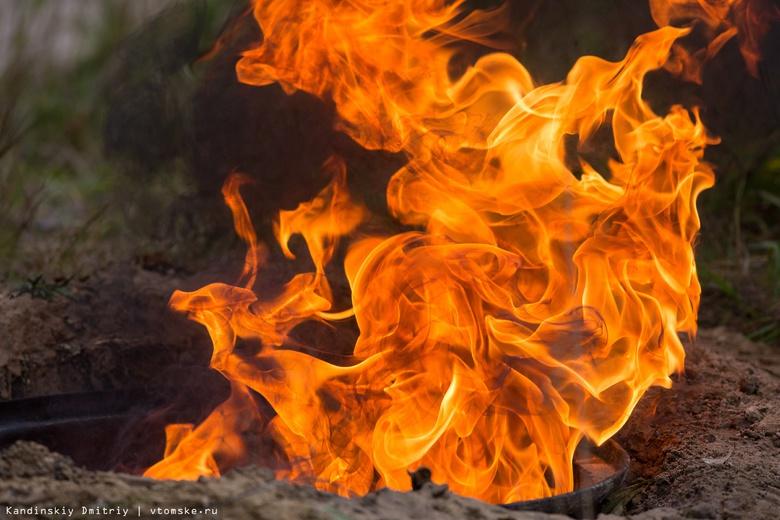 Дети устроили пожар в лесу под Томском, когда хотели запечь картофель