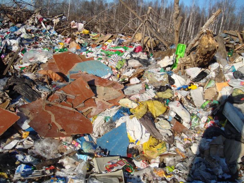 Россельхознадзор нашел еще 2 свалки недалеко от томского аэропорта