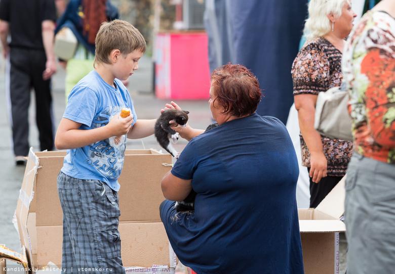 Томичи просят запретить торговлю котятами и щенками у центрального рынка