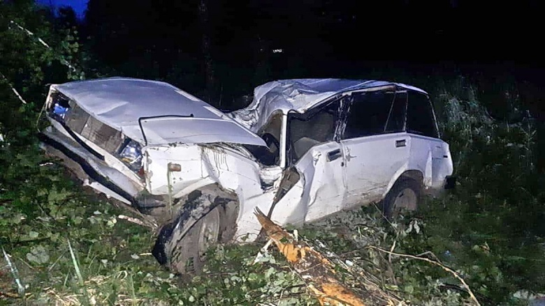 Более 40 человек погибли в ДТП на томских дорогах за полгода