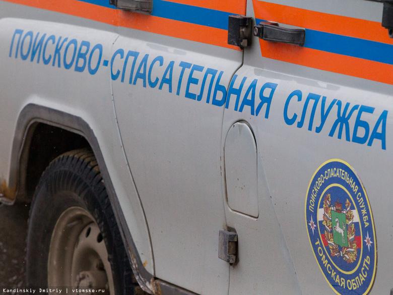 В Томске спасатели сняли с дерева парапланериста, который застрял в ветвях