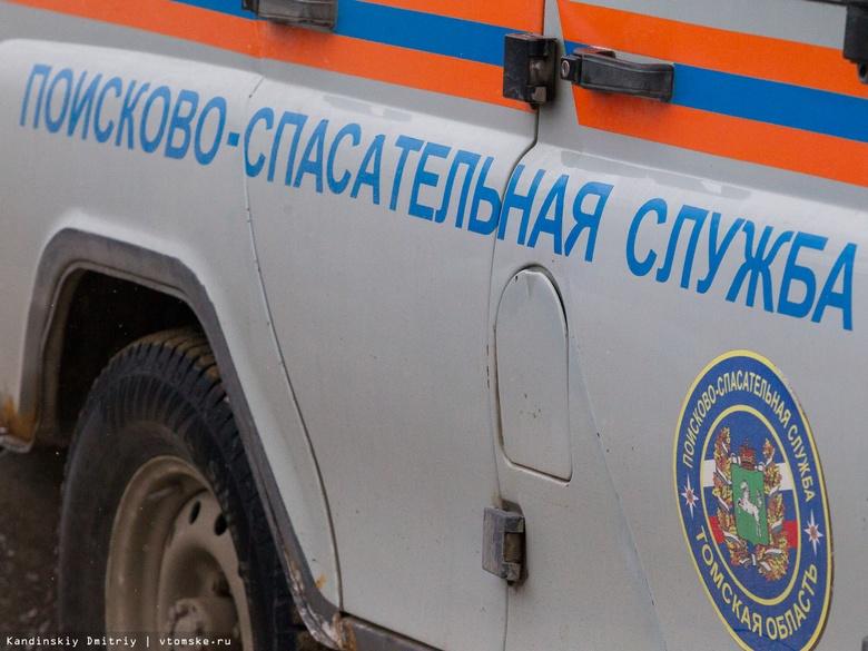 Парашютист зацепился и повис на дереве в Томском районе