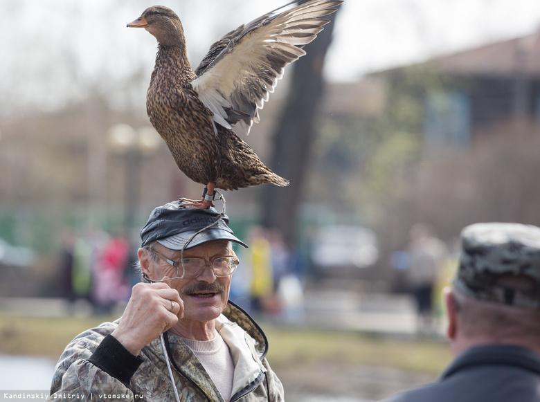 Охотничий биатлон и выставка уток: праздник «Зов весенней охоты» пройдет в Томске