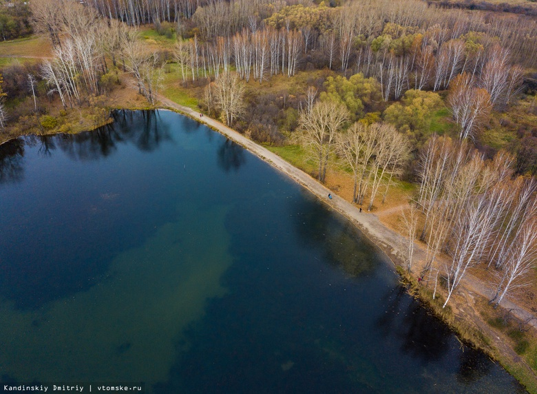 Директор томской компании получил условный срок за мошенничество с восстановлением озер