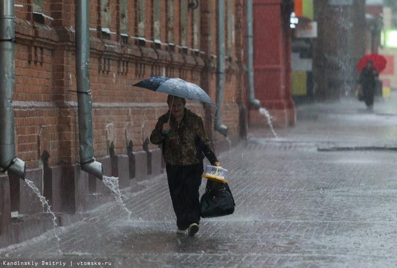 Порывы ветра до 13 м/с и грозы ожидаются в Томске в субботу