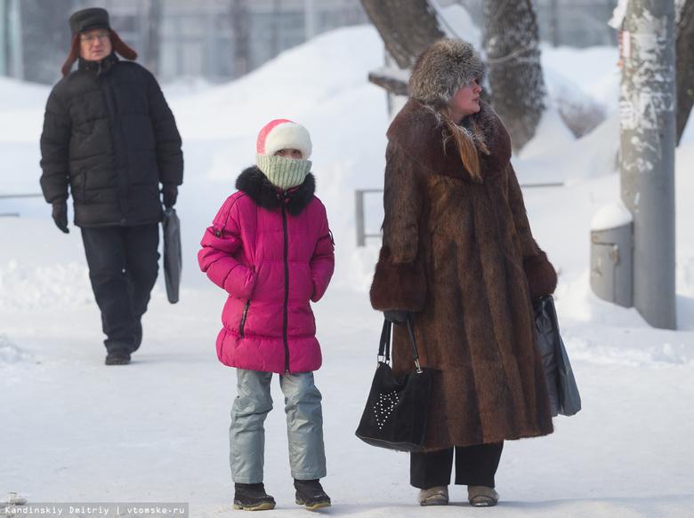 Томские школьники смогут не посещать уроки в мороз