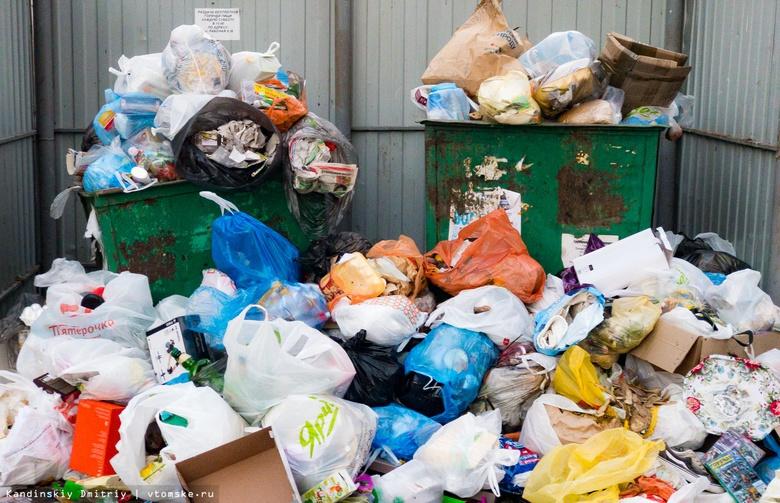 Власти: Томская область полностью не перейдет на новую систему мусоропереработки в 2019г