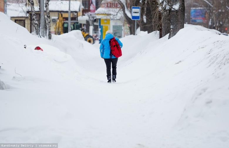 Томские ученые выясняют, сколько микропластика содержит снег в Сибири