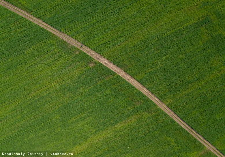 Томским аграриям в 2020г компенсируют затраты на оздоровление сельхозземель