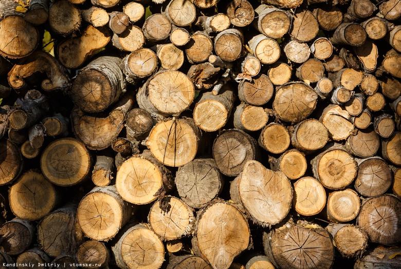 Рабочего завалило бревнами на предприятии по переработке леса в Асино