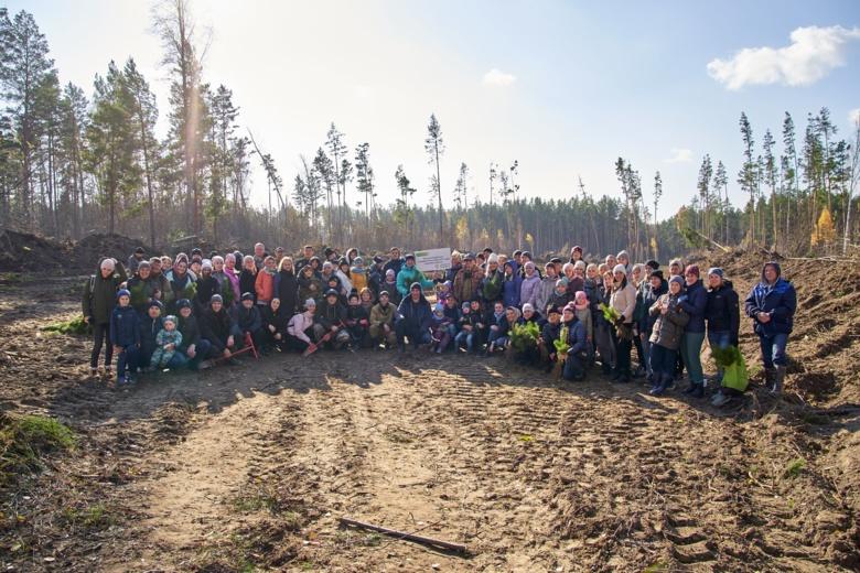 Волонтеры Сбербанка высадили в Томской области 6 тыс саженцев сосны