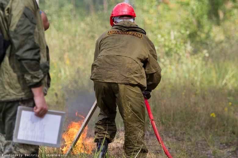 Томские лесные пожарные вернулись из Красноярского края спустя 1,5 месяца