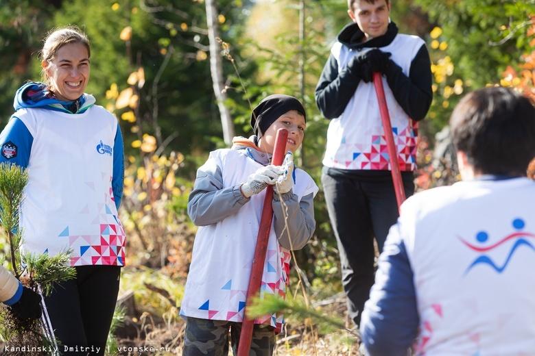«Живи, лес!»: участники всероссийской акции высадили 12 тыс молодых кедров в Зоркальцево