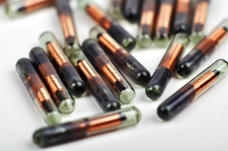 Томские разработчики отложили вживление универсальных чипов под кожу добровольцам