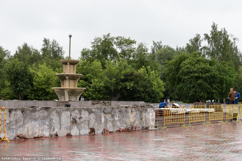 Власти: на Новособорной в Томске высадят новые деревья взамен вырубленных