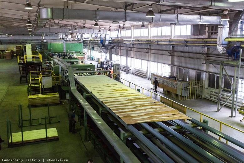 Козловская: треть заводов асиновского ЛПК еще не вышли на полную мощность
