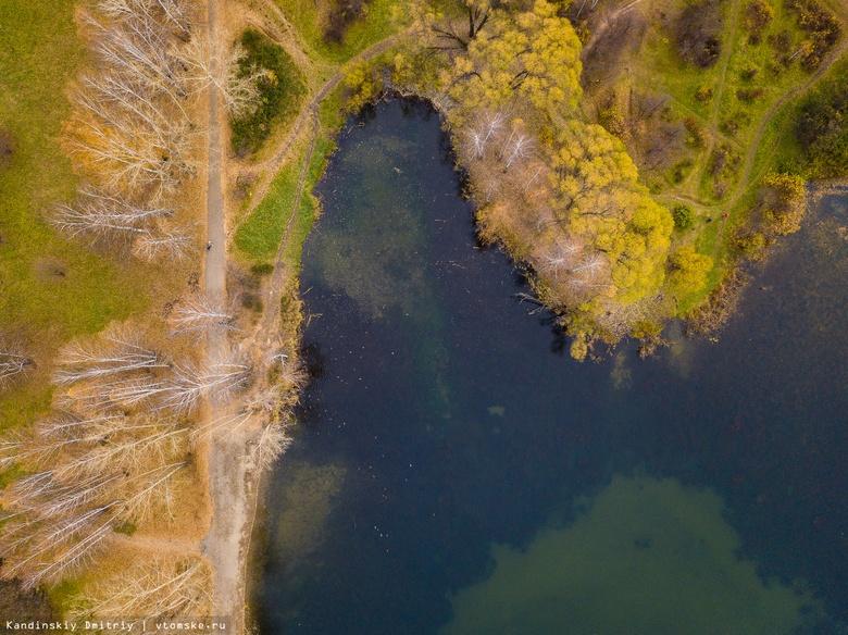 Стоки попали в озеро ботсада ТГУ из-за порыва канализационной трубы