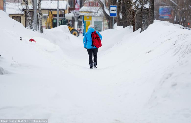 Кляйн поручил полностью вывезти снег с улиц Томска до середины апреля