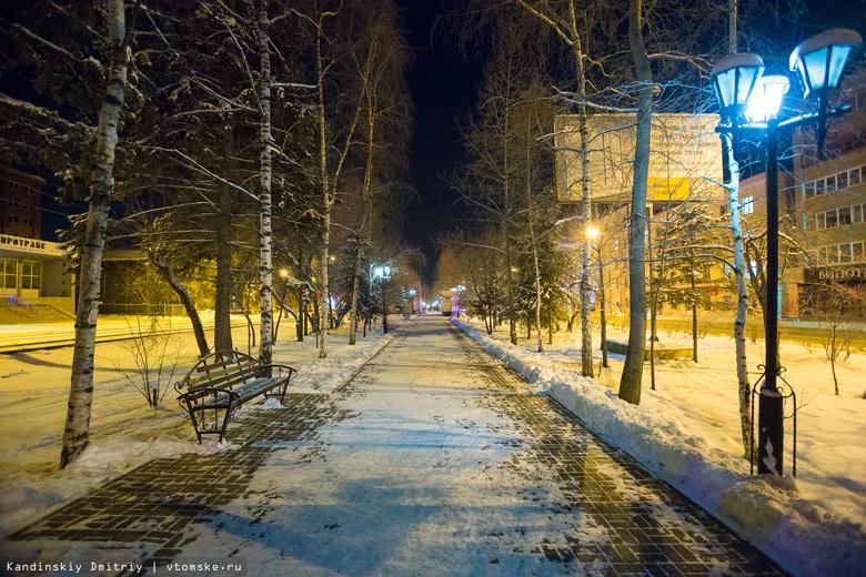 Томичи смогут выбрать озеленение на проспекте Кирова