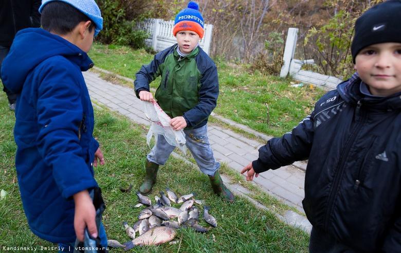 «Это варварство!»: вода из канализации убила всю рыбу в озере на окраине Томска