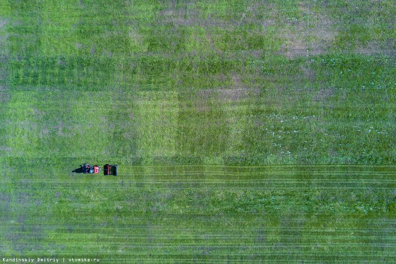 РФПЛ рекомендует «Томи» положить искусственный газон на домашнем стадионе