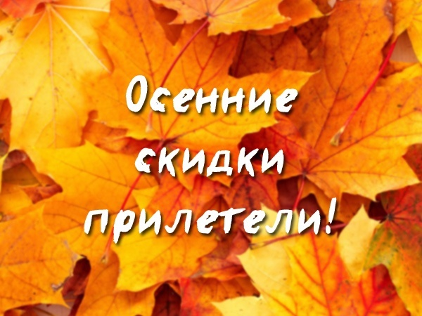Осенью падают не только листья, но и цены
